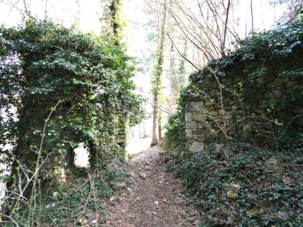 Ruderi del castello - Borgo San Dalmazzo
